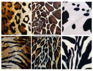 Musterkarte Farbkarte Tierfelle